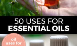 """Pinterest pin with two images. Top image is of a hand holding a bottle of essential oil. Bottom image is of four bottles of essential oils. Text overlay says, """"50 Uses for Essential Oils: oil uses for every day!"""""""