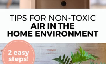 "Longer Pinterest pin with two images. Top image is of an essential oil diffuser. Bottom image is of house plant. Text overlay says, ""Tips for Non-Toxic Air in the Home Environment: 2 easy steps!"""