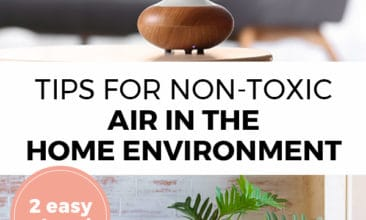 "Pinterest pin with two images. Top image is of an essential oil diffuser. Bottom image is of house plant. Text overlay says, ""Tips for Non-Toxic Air in the Home Environment: 2 easy steps!"""