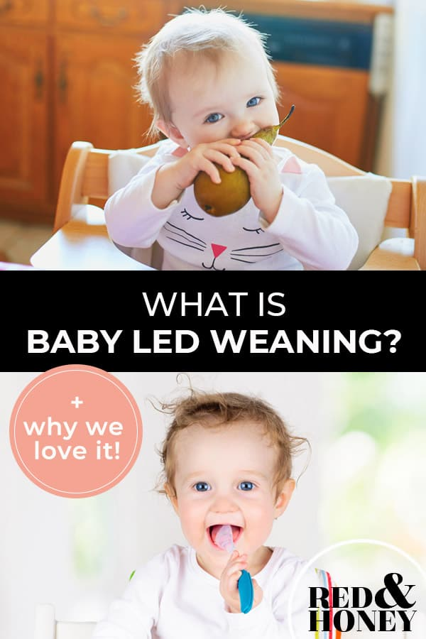 """Pinterest pin with two images. First image is of a baby sitting in a high-chair eating a pear. Second image is of a baby putting a spoon into their mouth. Text overlay says, """"What is Baby Led Weaning? + why we love it!"""""""