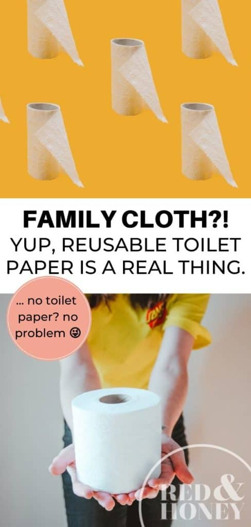 "Collage of toilet paper-related images with text reading ""Family Cloth?! Yup, Reusable Toilet is a Real Thing""."