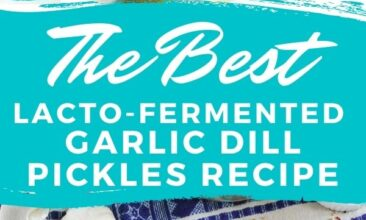 """Pinterest Pin collage of pickles and all the ingredients. Text Overlay reads """"The Best Lacto-Fermented Garlic Dill Pickle Recipe"""""""