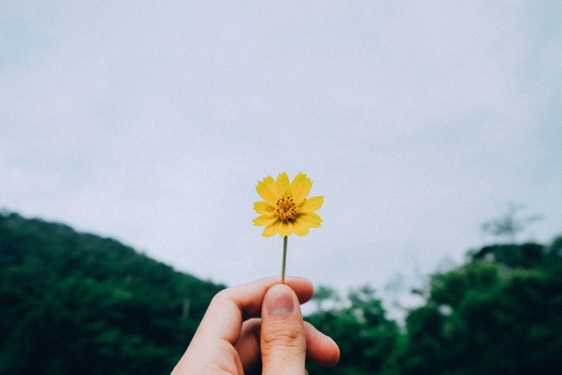 A hand holding a single yellow flower against a grey sky.