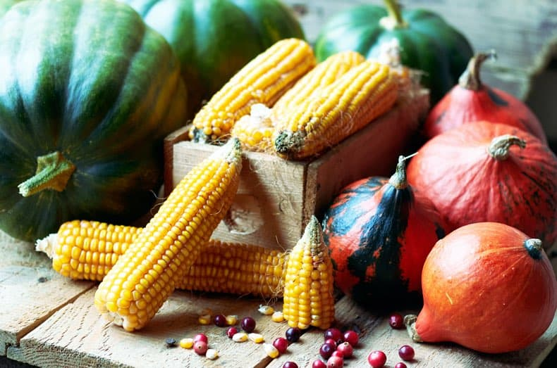 Image of gourds and corn on the cob arranged on a wooden table together.