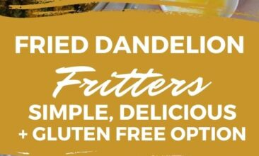 """Pinterest pin; images show ingredients for dandelion fritters, text overlay says """"Fried Dandelion Fritters: Simple, Delicious + Gluten Free Option"""""""